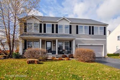 Elburn Single Family Home New: 1210 Blackberry Creek Drive
