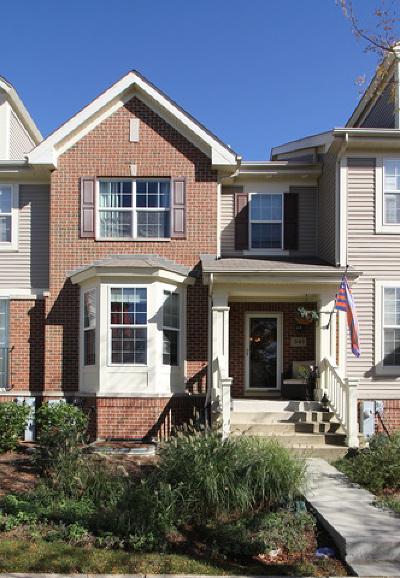 Condo/Townhouse New: 341 Bradbury Lane