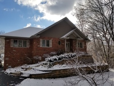 Palos Park Single Family Home For Sale: 23 North Woodland Trail
