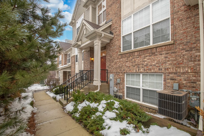 South Elgin Condo/Townhouse For Sale: 1699 Deer Pointe Drive