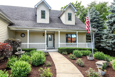 Du Page County Single Family Home New: 732 South Rohlwing Road