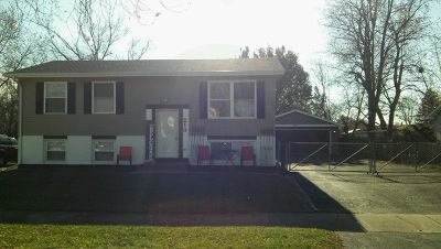 Will County Single Family Home New: 213 Plainview Drive