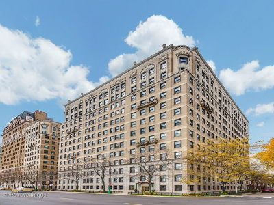 Condo/Townhouse New: 3530 North Lake Shore Drive #12B