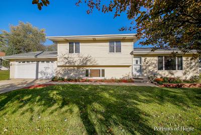 Lemont Single Family Home For Sale: 495 4th Street