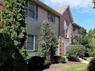 Sycamore Condo/Townhouse New: 436 South Peace Road