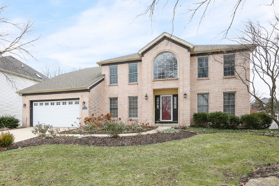 Naperville Single Family Home New: 2620 Wild Timothy Road