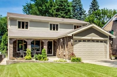 Elmhurst Single Family Home New: 431 West Alexander Boulevard