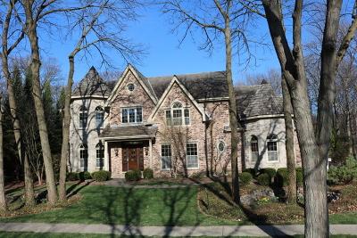 Kane County Single Family Home New: 1507 Keim Court