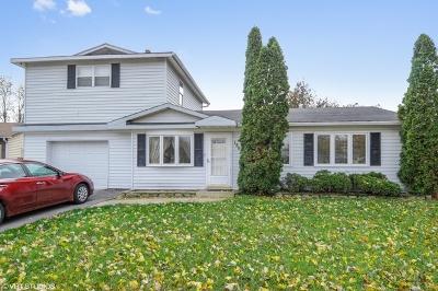 Bolingbrook Single Family Home For Sale: 156 Springleaf Drive