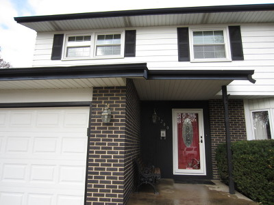 Mount Prospect Single Family Home For Sale: 1200 East Ironwood Drive