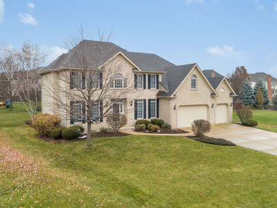 Naperville Single Family Home New: 3719 Tall Grass Drive