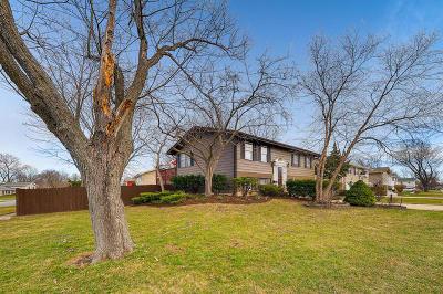 Hoffman Estates Single Family Home For Sale: 1465 Meyer Road