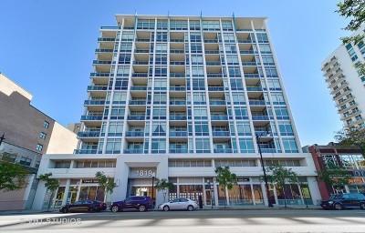 Chicago Condo/Townhouse New: 1819 South Michigan Avenue #905
