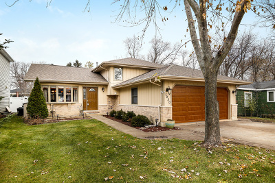 Downers Grove Single Family Home For Sale: 1030 Saylor Street
