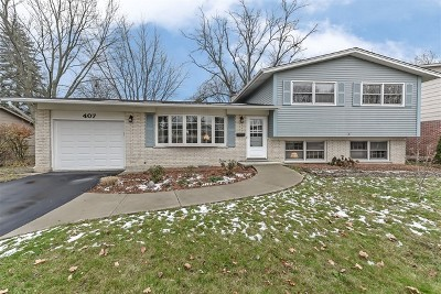 Arlington Heights Single Family Home New: 407 West Braeside Drive