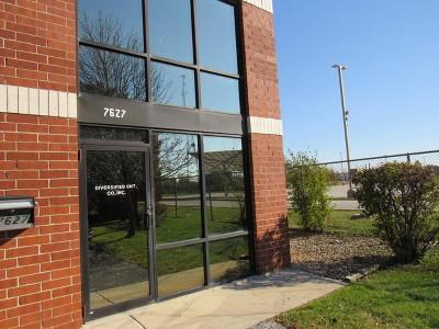 Bridgeview IL Commercial New: $249,900