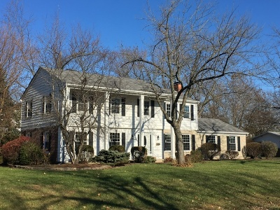Olympia Fields Single Family Home For Sale: 3443 Attica Road
