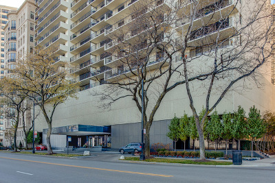 Chicago Condo/Townhouse New: 1212 North Lake Shore Drive #18BS