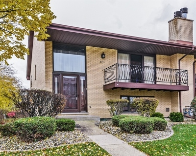Tinley Park Condo/Townhouse For Sale: 8341 160th Place #8341