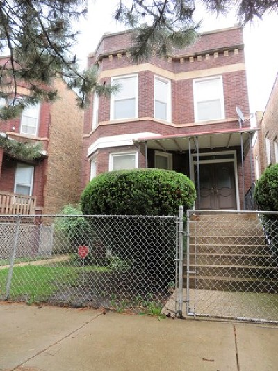Chicago Multi Family Home New: 19 South Menard Avenue