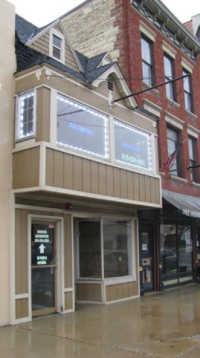 Homer Glen, Lockport Commercial For Sale: 913 South State Street