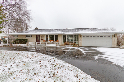 Schaumburg Single Family Home For Sale: 405 Springsouth Road