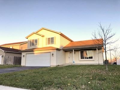 Joliet Single Family Home New: 1106 Nikki Court