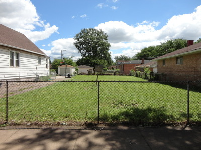 Chicago Residential Lots & Land New: 12551-53 South State Street