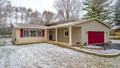 Schaumburg Single Family Home Price Change: 104 Lunt Avenue