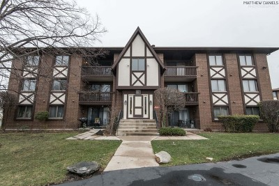 Palos Heights, Palos Hills Condo/Townhouse New: 10581 Palos Place #3B