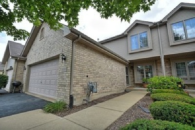 Tinley Park Condo/Townhouse New: 9060 Newcastle Court