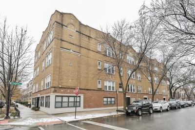 Chicago Rental New: 537 West Eugenie Street #2