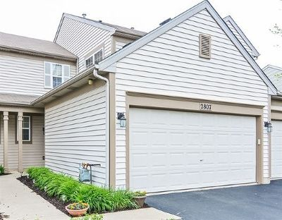 Naperville Rental New: 2807 Gypsum Circle