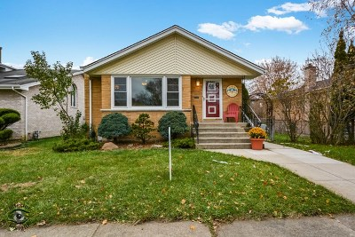 Chicago IL Single Family Home New: $264,900