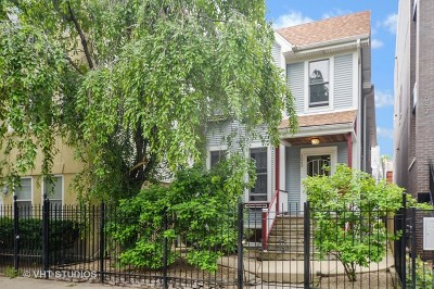Chicago Single Family Home New: 1059 North Wood Street