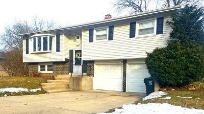 Mount Prospect Single Family Home New: 1107 North Greenfield Lane
