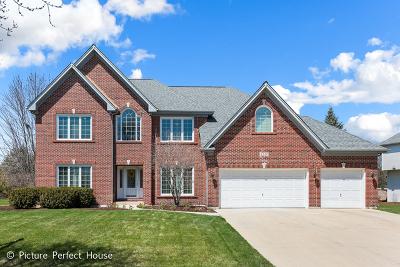 Naperville Single Family Home New: 4240 Colton Circle