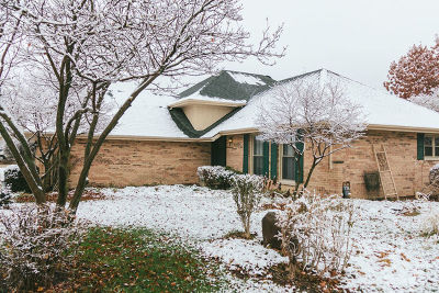 New Lenox Single Family Home For Sale: 1009 Andrea Drive