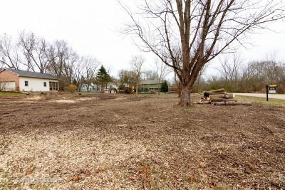 Barrington  Residential Lots & Land For Sale: 1011b South Cook Street