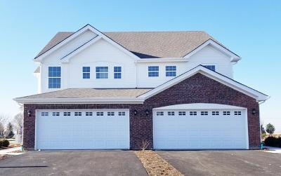 Joliet Condo/Townhouse For Sale: 8649 Foxborough Way #1662