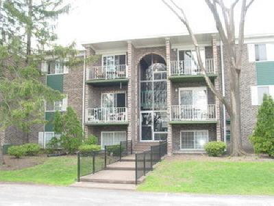 Arlington Heights IL Condo/Townhouse New: $129,900