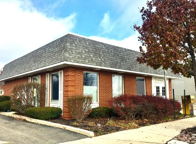 Mokena, Frankfort Commercial For Sale: 11124 Front Street
