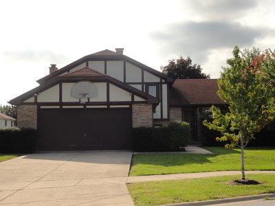 Tinley Park Single Family Home New: 17044 Ozark Avenue