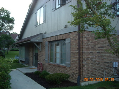 Palos Heights Condo/Townhouse New: 13328 South Oakview Court #13328