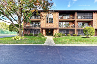 Cook County Condo/Townhouse New: 8218 Cobblestone Court #2D
