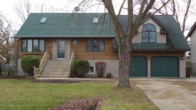 Tinley Park Single Family Home For Sale: 9257 Pleasant Avenue