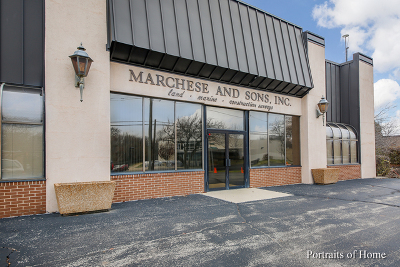 Roselle Commercial For Sale: 10 Monaco Drive