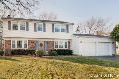 Buffalo Grove Single Family Home New: 391 Arborgate Lane