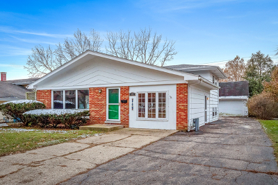 West Dundee Single Family Home For Sale: 607 South Street