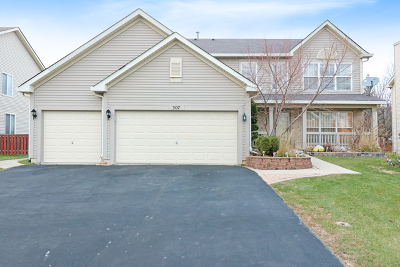 Bolingbrook Single Family Home New: 307 Berkeley Drive
